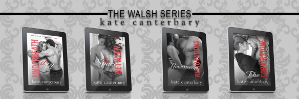 The Walsh Series
